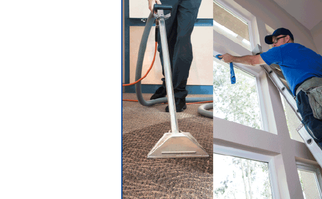 Sb Pacific Carpet Amp Window Cleaning